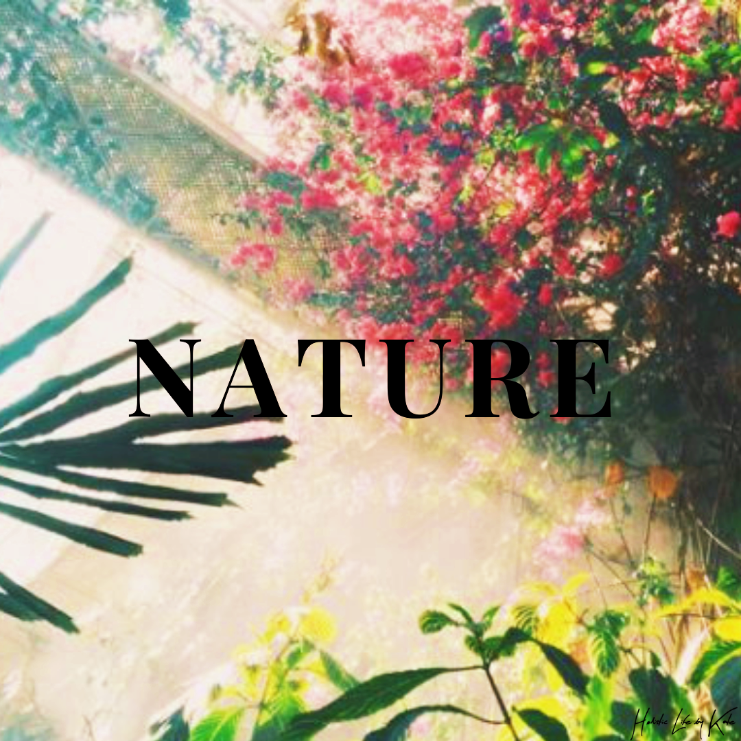 Therapeutic Force Of Nature – My Healing Project – Part II – Prescription For Nature